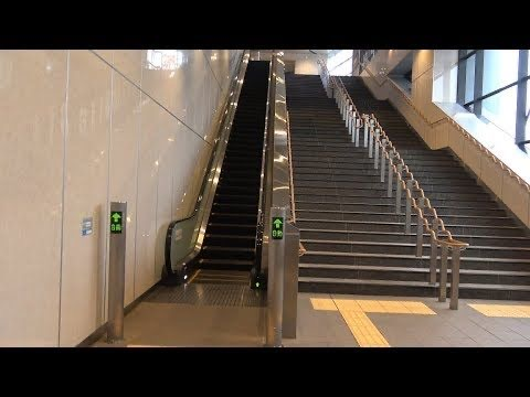 エスカレーター 階段